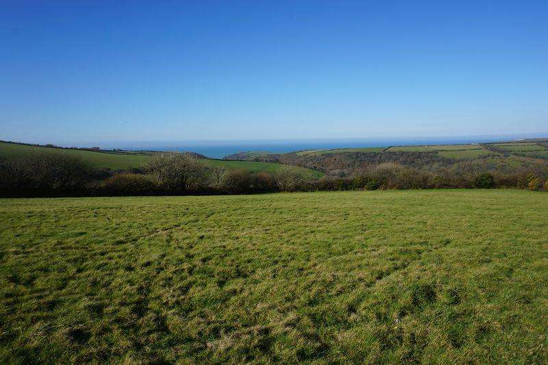 Land Commercial for sale in Field at Treworld, Minster, Boscastle