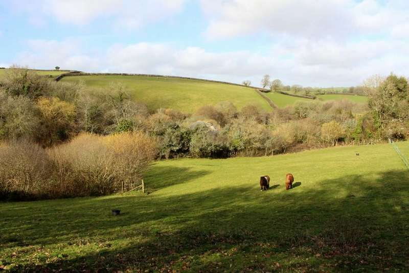 4 Bedrooms Farm House Character Property for sale in Harbertonford
