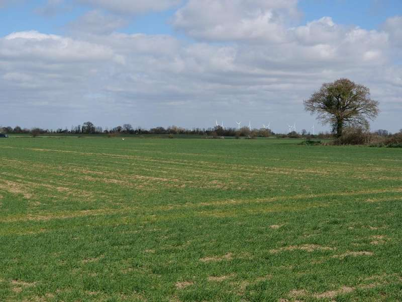 Farm Land Commercial for sale in Dengie