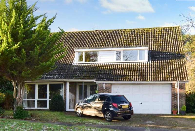 4 Bedrooms Detached House for sale in Mill View Gardens, , Croydon, Surrey