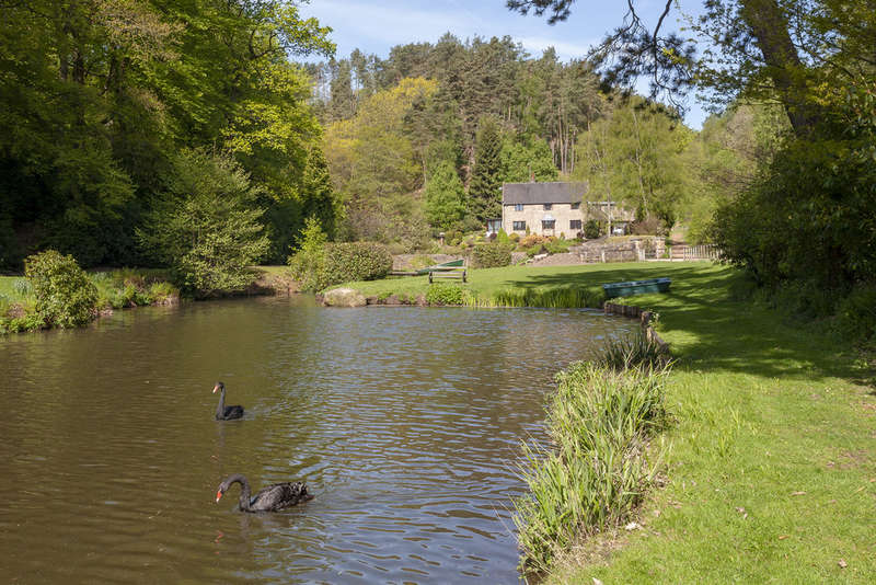 4 Bedrooms Detached House for sale in Red Road, Dimmingsdale, Nr Alton