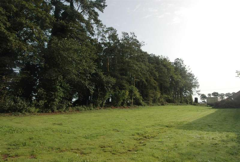 Land Commercial for sale in Building Plot, Garden Paddock, Duns
