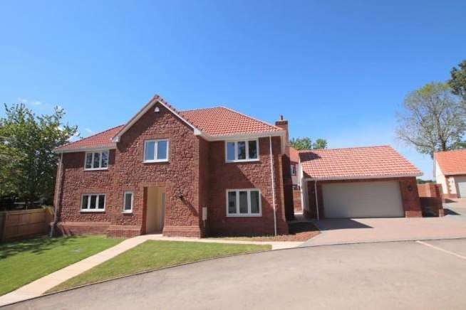 4 Bedrooms Property for sale in Castle View, Langaller, Taunton