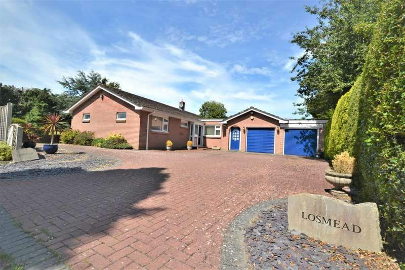 2 Bedrooms Bungalow for sale in Blandford