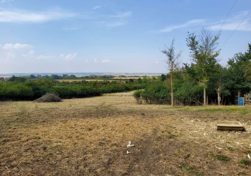 Land Commercial for sale in Crouch View Farm, Lark Hill Road, Canewdon, Rochford, Essex, SS4 3RZ