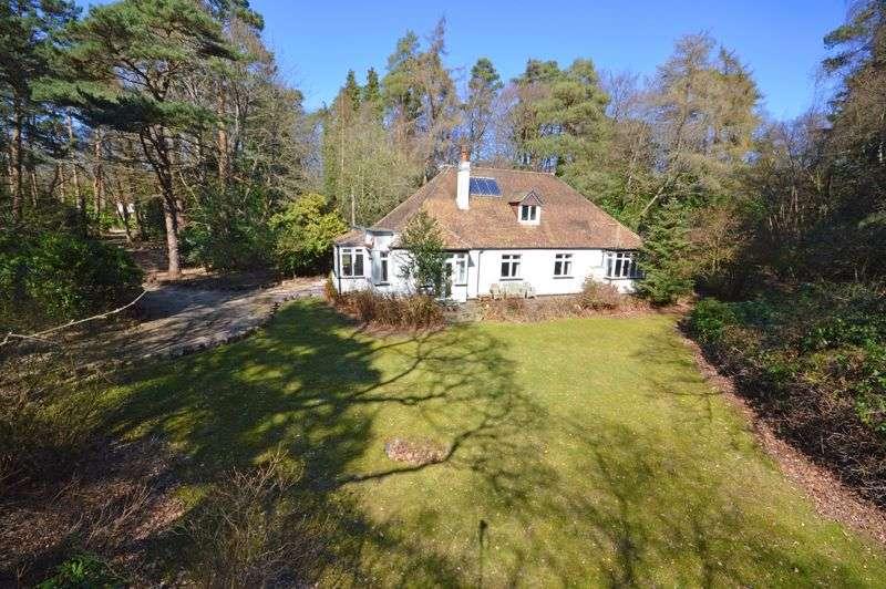 4 Bedrooms Property for sale in Grayshott