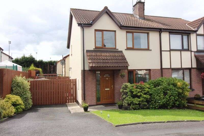 3 Bedrooms Semi Detached House for sale in Toll House Park, Newry