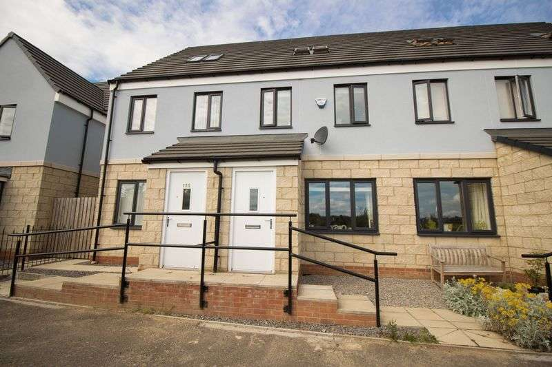 3 Bedrooms Terraced House for sale in Derwent Water Drive, Stella Riverside, Blaydon