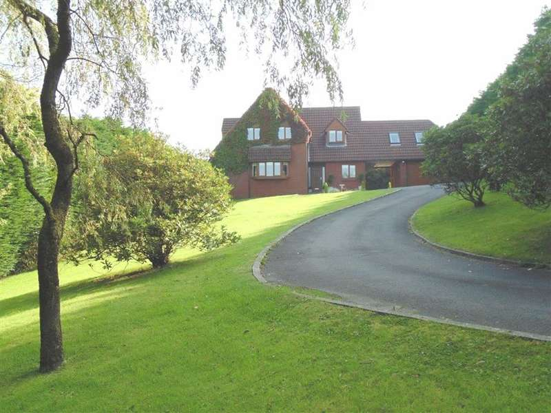5 Bedrooms Detached House for sale in Tudor Court, Llanedi