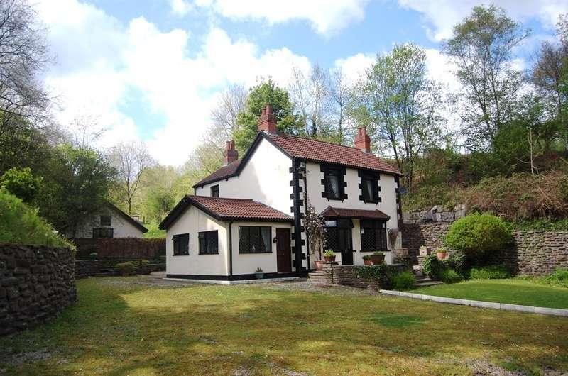 4 Bedrooms Detached House for sale in Cwm Gelli, Blackwood