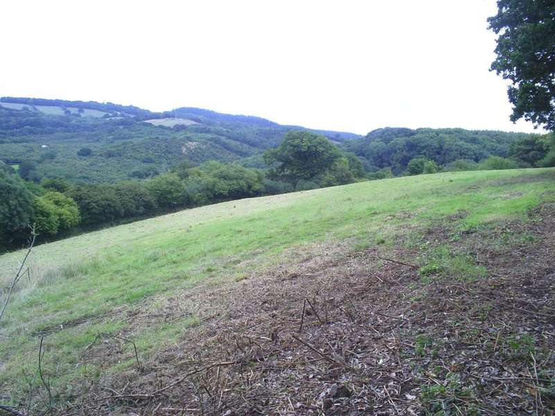 Land Commercial for sale in Doddiscombsleigh