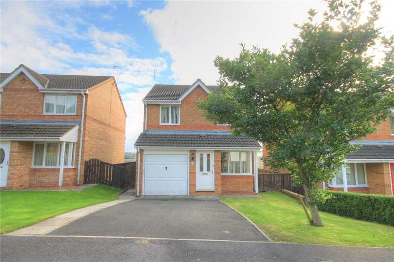 3 Bedrooms Detached House for sale in Mowlam Drive, East Stanley, Stanley, DH9