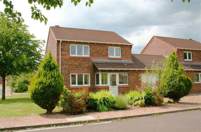 3 Bedrooms Semi Detached House for sale in Clendinning Way, Portadown