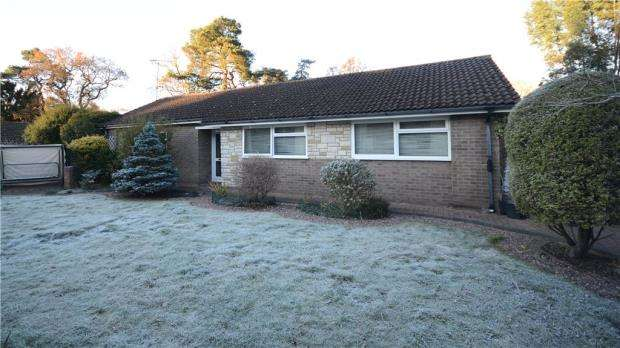 3 Bedrooms Detached Bungalow for sale in Winston Walk, Lower Bourne, Farnham