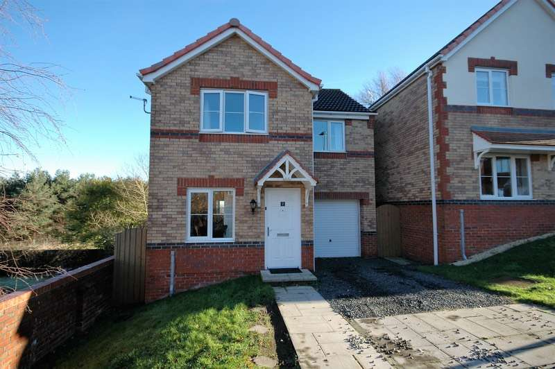 3 Bedrooms Detached House for sale in Barley Rise, Durham, County Durham, DH7