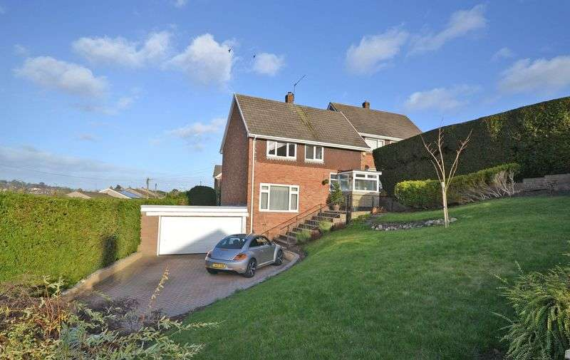 3 Bedrooms Detached House for sale in Superb Detached House, Castle Park Road, Newport