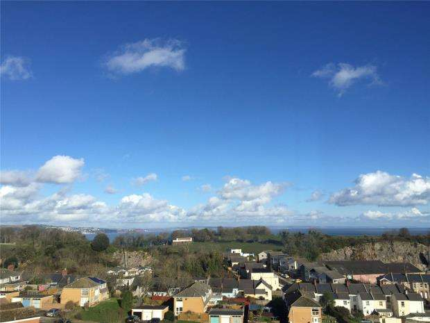 2 Bedrooms Flat for sale in Langstone Close, Babbacombe, Torquay, Devon