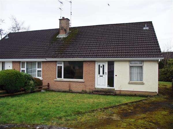 3 Bedrooms Semi Detached House for sale in BT94 2EE