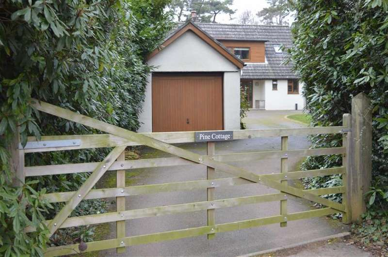 3 Bedrooms Detached House for sale in Cannon Hill Road, Wimborne, Dorset