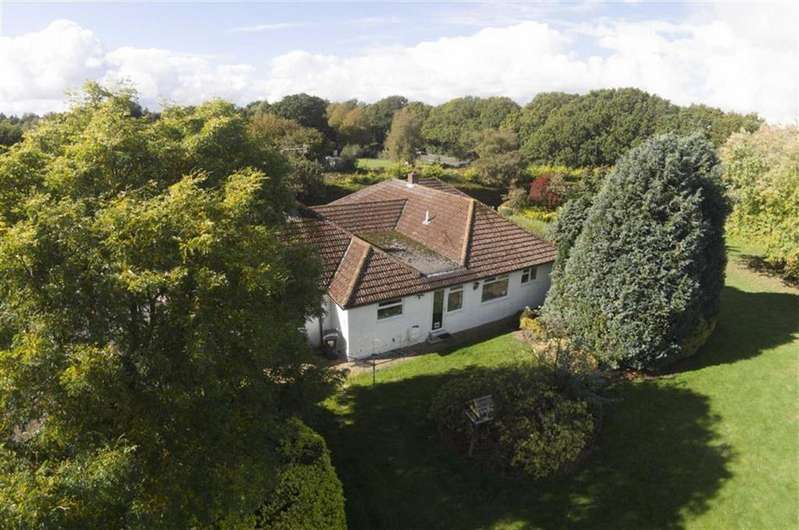 4 Bedrooms Detached Bungalow for sale in Wareham Road, Poole, Dorset