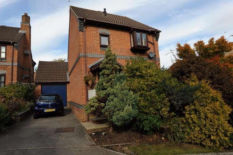 3 Bedrooms Detached House for sale in Brocks Close, Dibden Purlieu