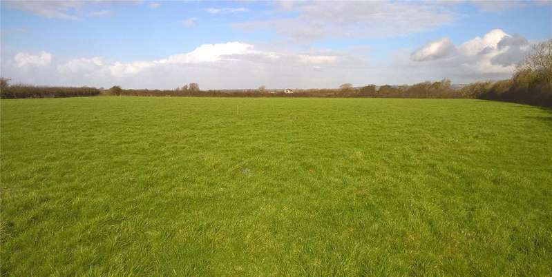 Land Commercial for sale in LOT 1 - Agricultural Pasture Land, Brent Knoll, Highbridge, Somerset, TA9
