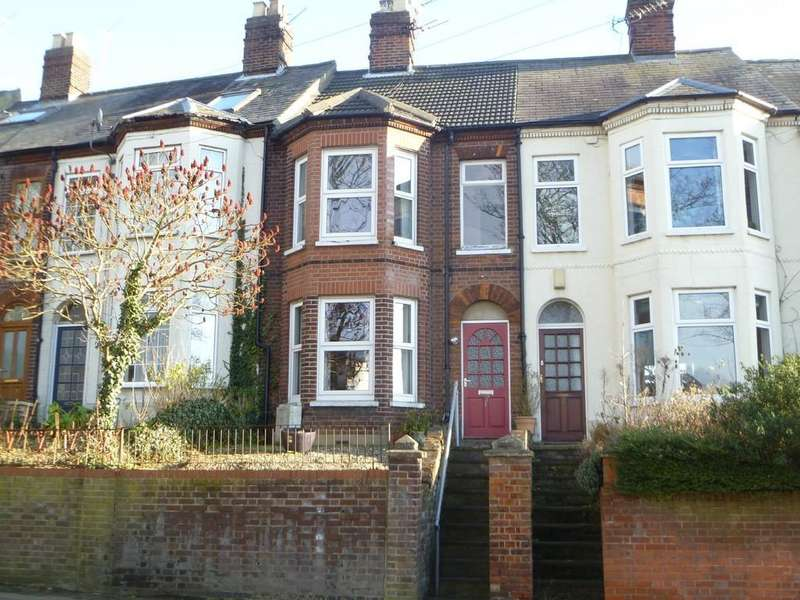 3 Bedrooms Terraced House for sale in St Martins Road, Norwich, Norfolk