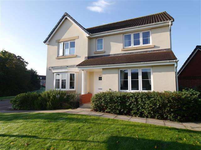4 Bedrooms Detached House for sale in Pear Tree Way, Wellington TA21