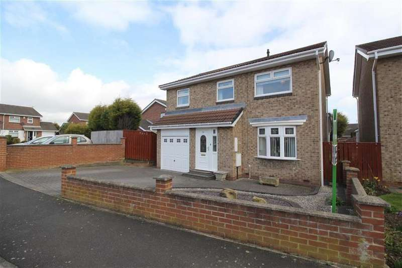 4 Bedrooms Detached House for sale in Home Park, Wallsend, NE28