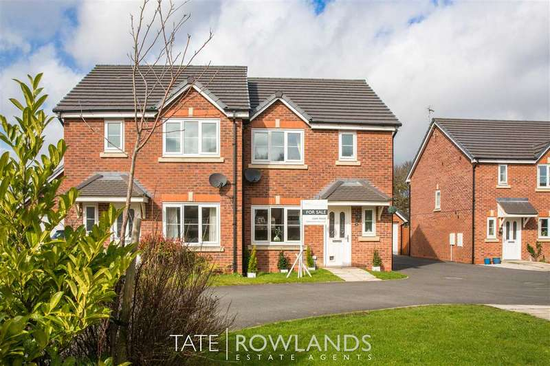 3 Bedrooms Semi Detached House for sale in Bilberry Grove, Buckley