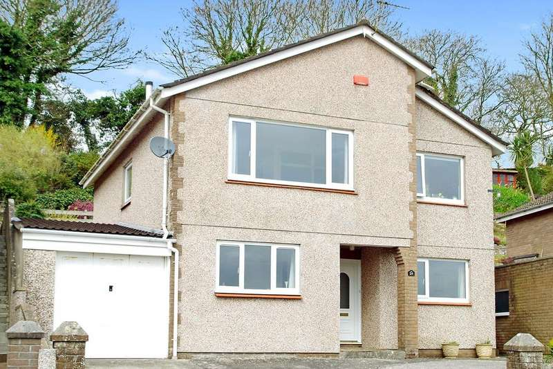 4 Bedrooms Detached House for sale in Elm Tree Park, Yealmpton, Plymouth, PL8