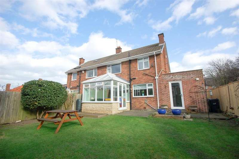3 Bedrooms Semi Detached House for sale in Ringmore Court, Sunderland