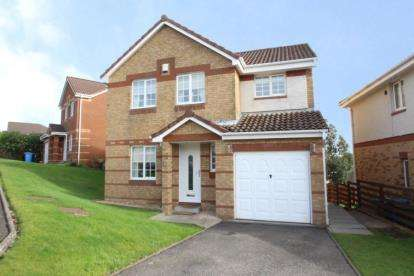 4 Bedrooms Detached House for sale in James Smith Avenue, Maddiston