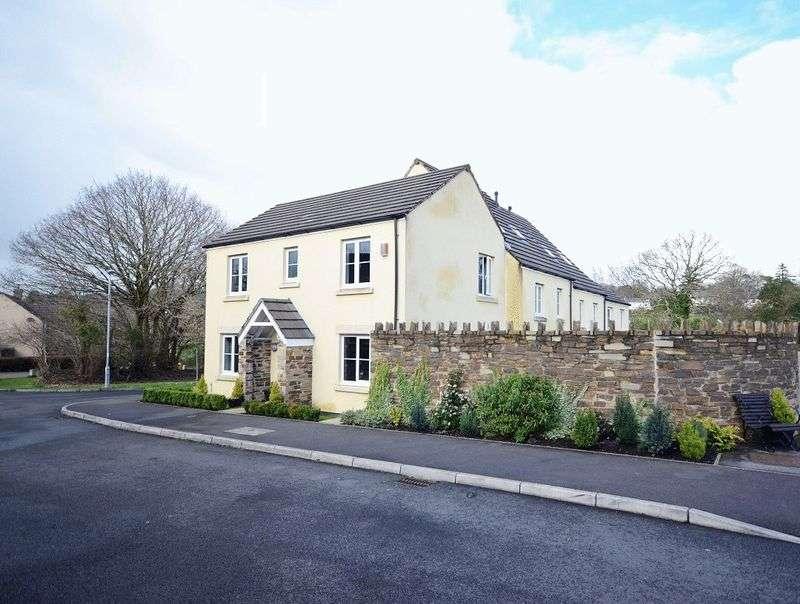 3 Bedrooms Semi Detached House for sale in Dipper Drive, Tavistock