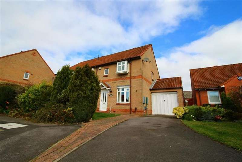 3 Bedrooms Semi Detached House for sale in Appleby Park, North Shields