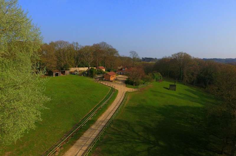 4 Bedrooms House for sale in Highwood, Ringwood, BH24 3LG