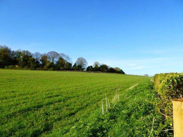 Land Commercial for sale in Red Rice Road, Upper Clatford