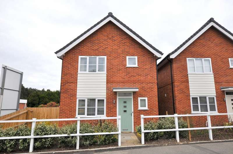 3 Bedrooms Detached House for sale in Holly Grove, Ringwood Road, Fordingbridge, SP6 3DF