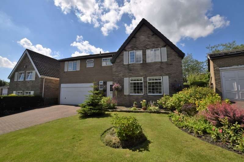 3 Bedrooms Detached House for sale in The Hayricks, Tanfield, Stanley, DH9