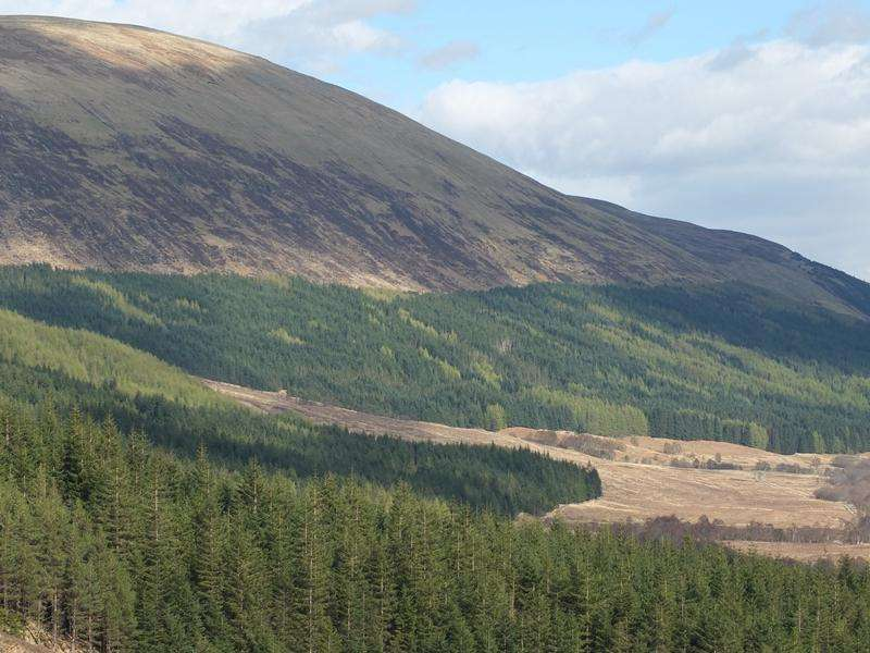 Land Commercial for sale in The Glenloy Woodlands, Nr Fort William, Lochaber, PH33