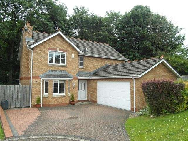 4 Bedrooms Detached House for sale in Larch Drive, Stanwix, Carlisle, Cumbria, CA3 9FL