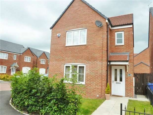 3 Bedrooms Detached House for sale in Wheatfield Road, Newcastle upon Tyne, Tyne and Wear