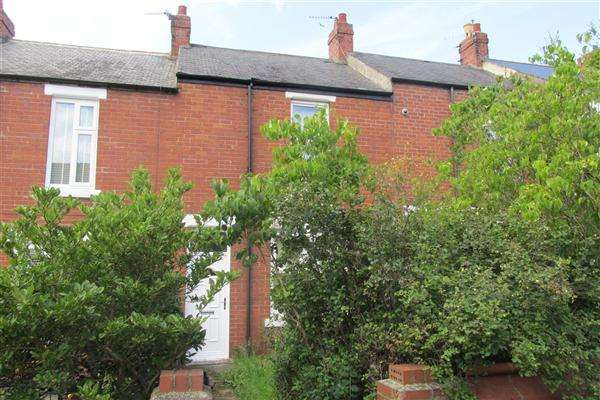 2 Bedrooms Terraced House for sale in Wellington Street, Newcastle upon Tyne