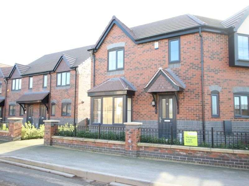 3 Bedrooms Semi Detached House for sale in Riley Way, Hull, HU3