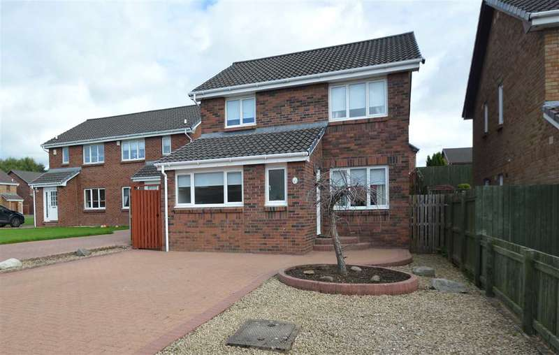 3 Bedrooms Detached House for sale in Parkneuk Street, Motherwell
