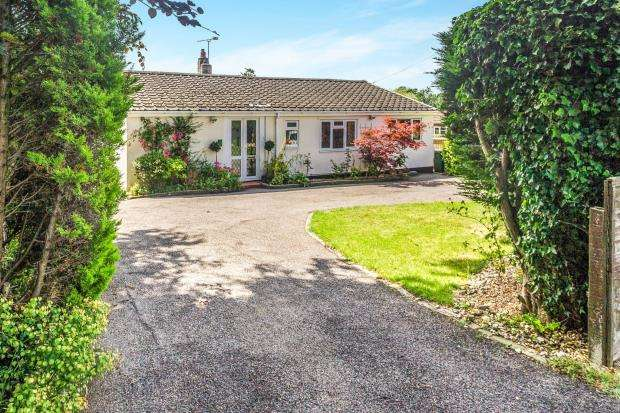 3 Bedrooms Bungalow for sale in Alton, Hampshire