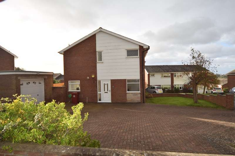 3 Bedrooms Semi Detached House for sale in Mulberry Way, Barrow-in-Furness, Cumbria, LA13 0RR
