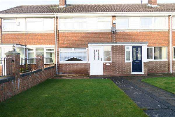 3 Bedrooms Terraced House for sale in Tarragon Way, Holder House, South Shields