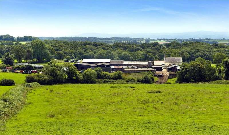 Farm Commercial for sale in Dolton, Winkleigh, Devon, EX19