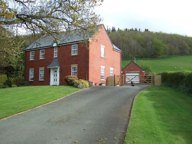 4 Bedrooms Detached House for sale in Aberhafesp, Newtown, Powys